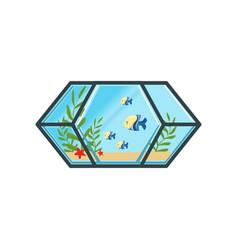 geometric aquarium with little fishes sand sea vector image