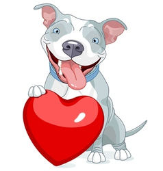 Valentine Pit Bull Dog vector