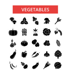 Vegetables thin line icons linear vector