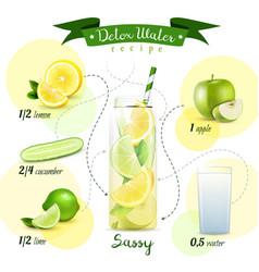 Detox water recipe composition vector