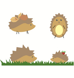 Drawn hedgehog with berries and leaves on white vector