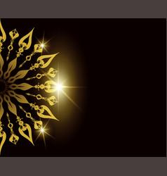 Luxury circular pattern mandala background vector