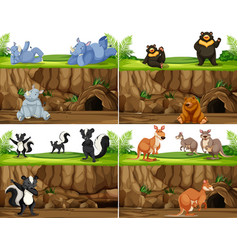 set of animal in nature vector image