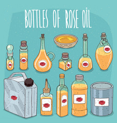 set of containers with rose oil vector image