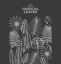 tropical plants banner design hand drawn vector image