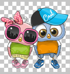 two cute owls on a white and gray background vector image