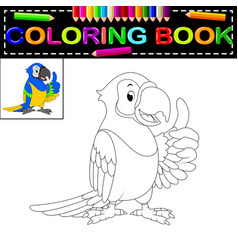 parrot coloring book vector image vector image