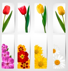 Set of banners with different colorful flower vector image