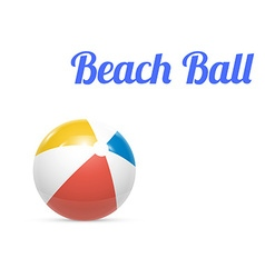Beach ball Isolated on white background vector image vector image