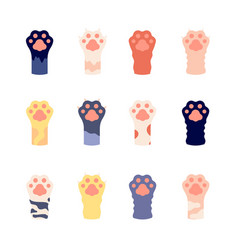 Cat foots animal paws close up flat wild kitty vector