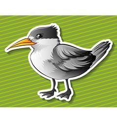 Gray bird vector image