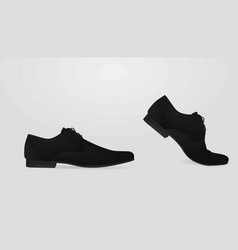 Men elegant shoe vector