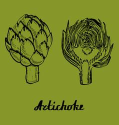 path artichoke poster vector image