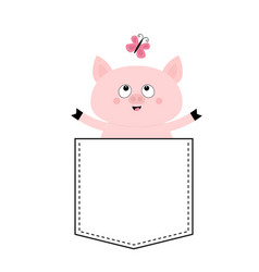 Pig face head in pocket butterfly cute vector