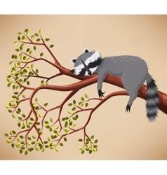 Raccoon on tree vector