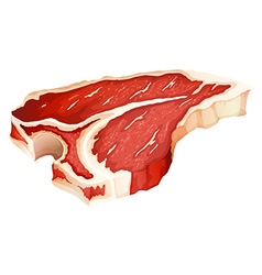 Tbone meat vector image