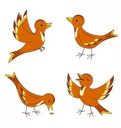 Vector birds vector