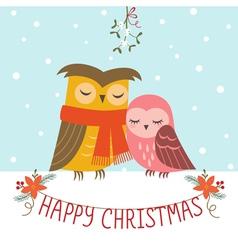 Christmas couple of owls vector image