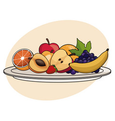 fruit plate food healthy image vector image vector image