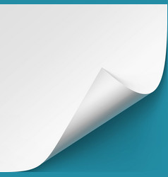 curled corner of white pape mock up vector image