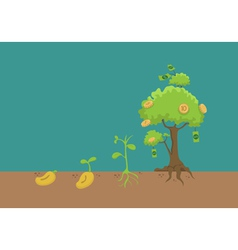 Evolution of money tree vector image vector image