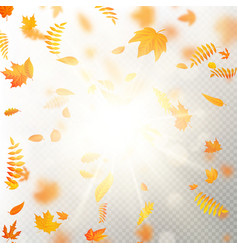 effect of autumn falling leaves layer with shallow vector image