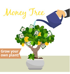 Hand watering money tree vector