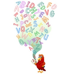 Parrot reading English book vector image