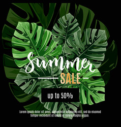 sale banner poster with jungle palm leaves vector image