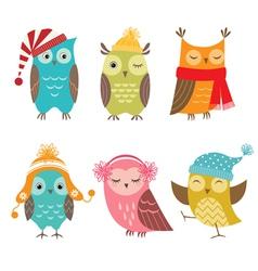 Winter owls vector