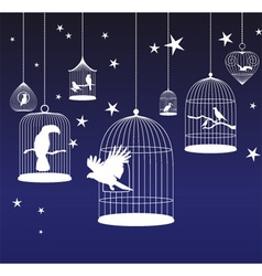background with birds cages vector image vector image