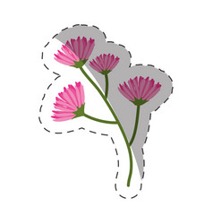 pink branch flowers decoration cut line vector image