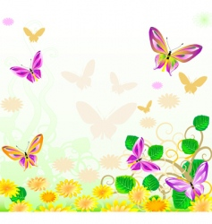 butterfly sunset vector image