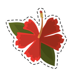 Cartoon hibiscus flower exotic icon vector