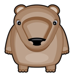 cartoon of cute baby bear vector image