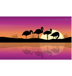Collection lake scene with flamingo silhouettes vector