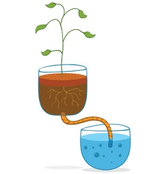 hydroponic concept vector image