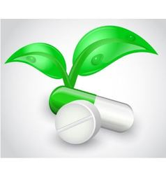natural medicines vector image