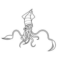Squid ocean water animal sketch tattoo vector