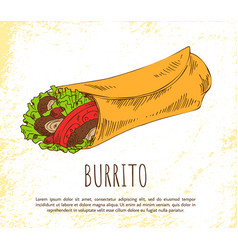 burrito snack isolated on white poster vector image