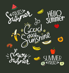 fruits summer labels set banner vector image