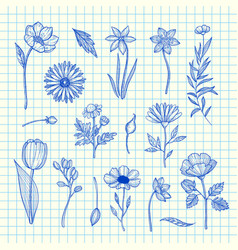 hand drawn flowers set on blue cell sheet vector image