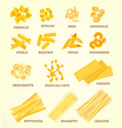 italian pasta types or sorts icons vector image