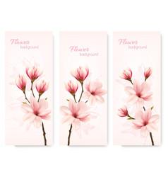 set nature flower magnolia banners vector image