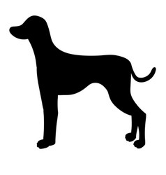 Silhouette of dalmatian isolated on white vector