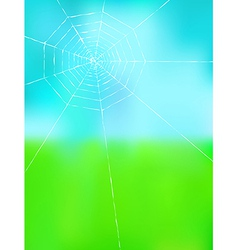 Spider web on color background vector