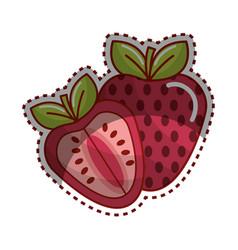 Sticker strawberry fruit icon stock vector
