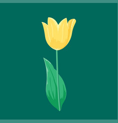 Vintage yellow tulip flower can be used as vector