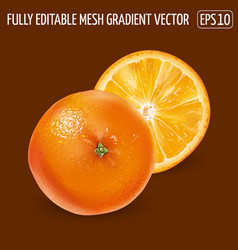 Whole orange with a round slice on a brown vector