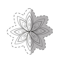 flower aster decoration image cut line vector image vector image